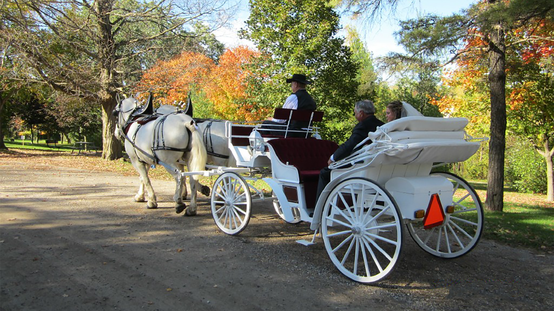 white-wedding-carriage-portfolio
